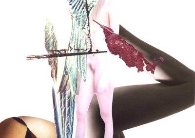 coll-222 Evanescence 08.2007